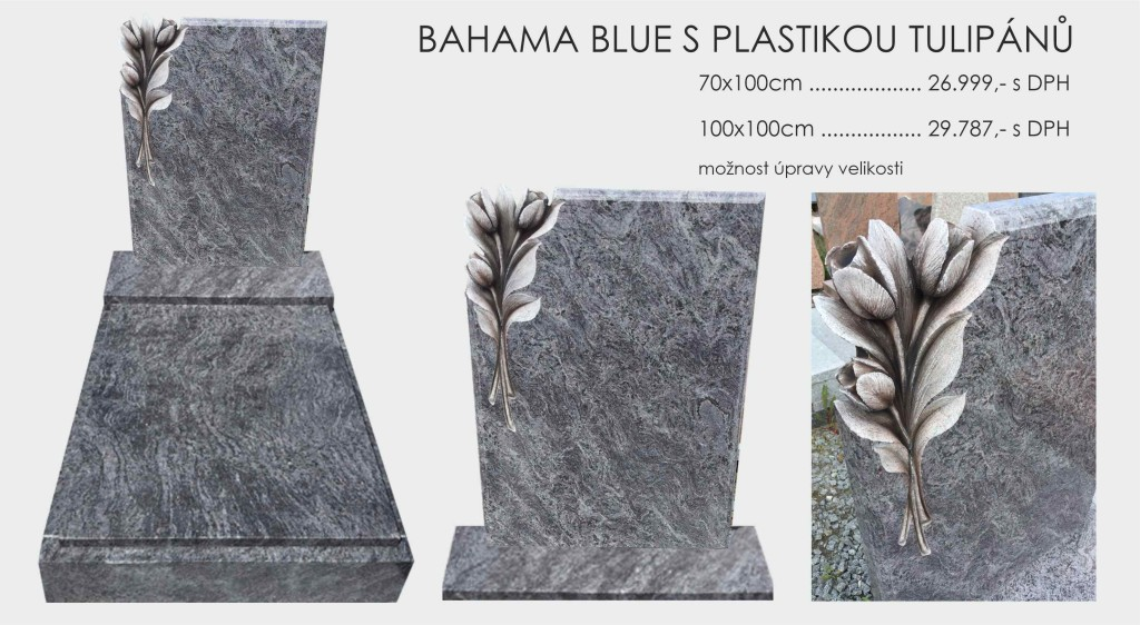 Bahama Blue s plastikou TULIPÁNŮ